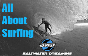 Saltwater Dreaming Surfing Website